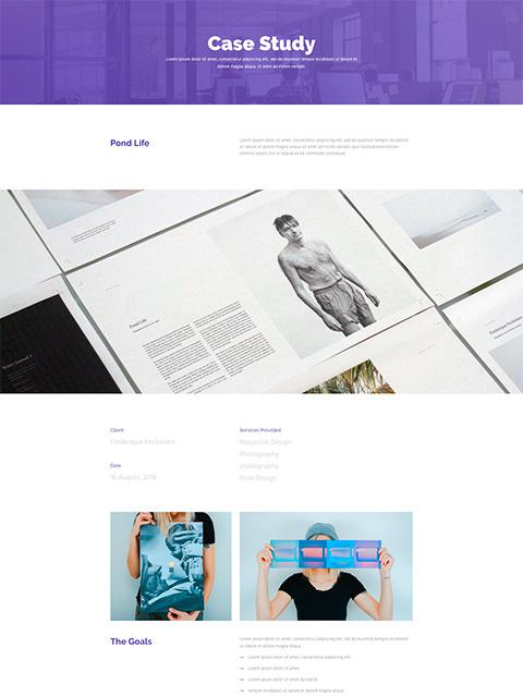 Portfolio-Details